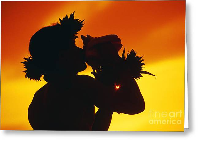 Conch Shell Blower Greeting Card
