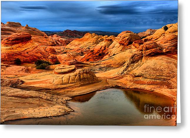 Coyote Buttes Reflections Greeting Card by Adam Jewell