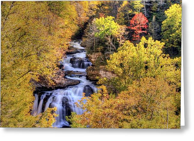 Cullasaja Falls Greeting Card by Doug McPherson