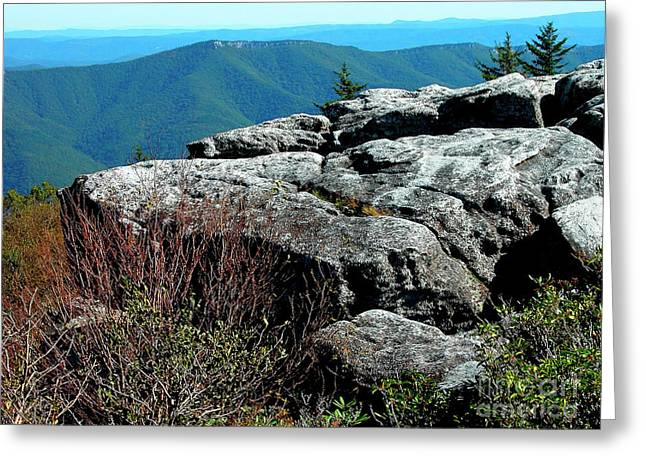 Dolly Sods Wilderness Greeting Card by Thomas R Fletcher