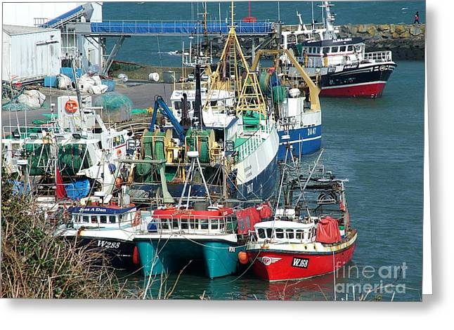 Dunmore East Harbour Greeting Card by Joe Cashin
