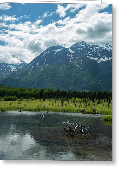Eagle River Nature Center Greeting Card by Jon Manjeot