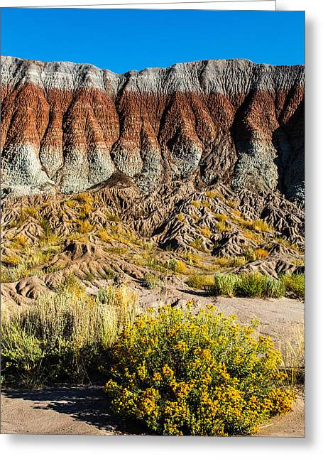 Earth Tones Greeting Card by James Marvin Phelps