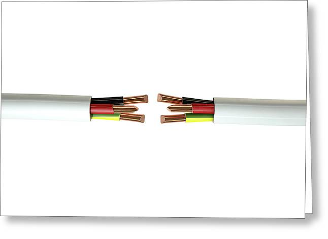 Electrical Cable Cut Greeting Card by Allan Swart