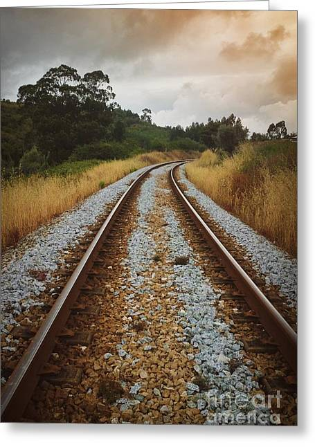 Empty Railway Greeting Card by Carlos Caetano