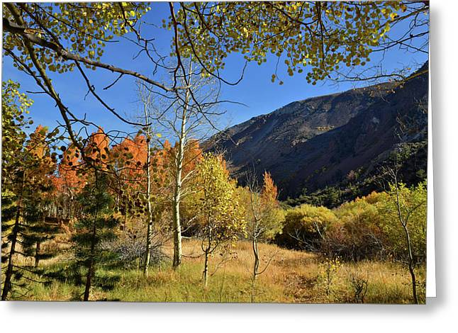 Greeting Card featuring the photograph Fall In Bishop Creek  by Dung Ma