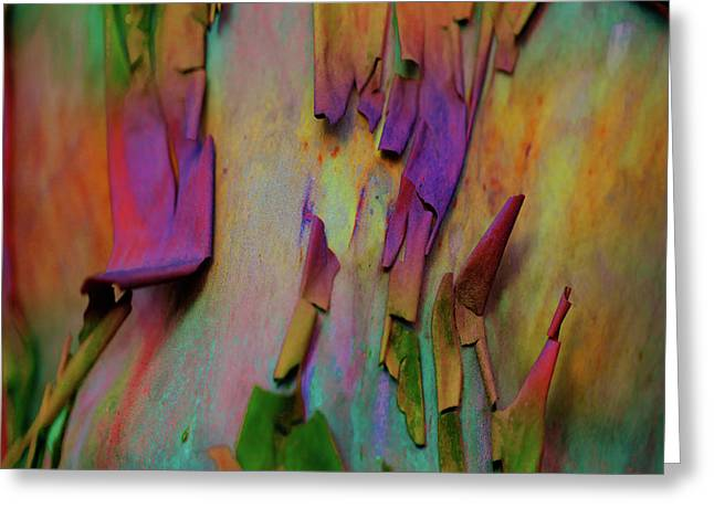 Fearlessness Greeting Card by Richard Laeton