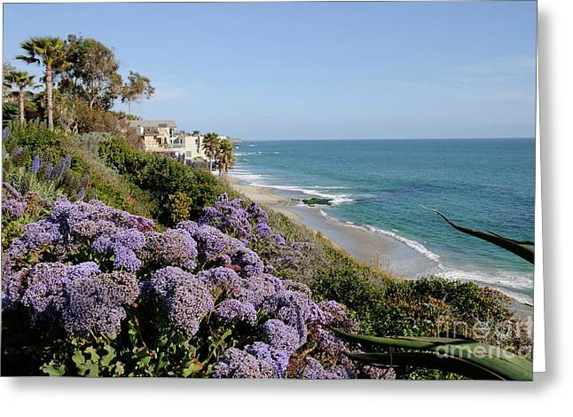Flowers At The Beach Greeting Card by Timothy OLeary