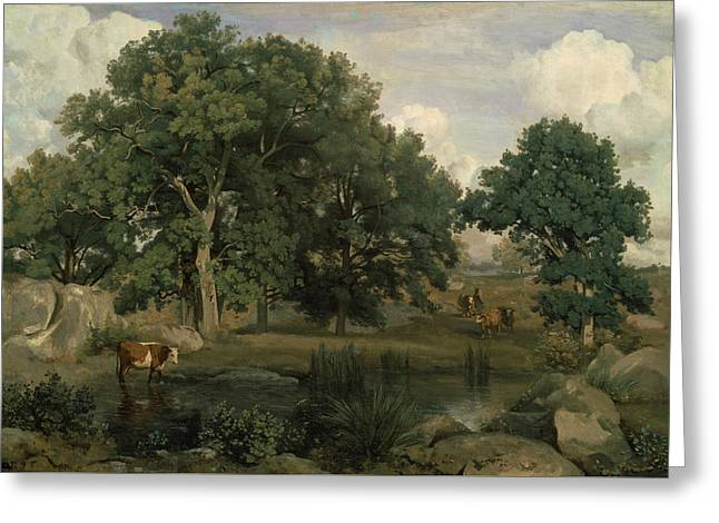 Forest Of Fontainebleau Greeting Card by Jean-Baptiste-Camille Corot