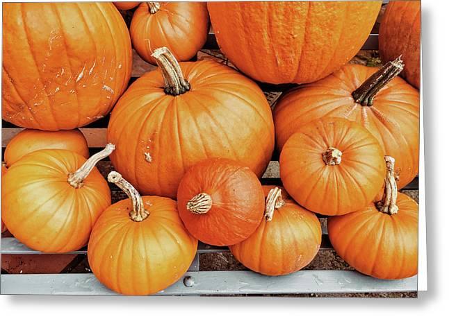 Fresh Pumpkins Selection Greeting Card by Tom Gowanlock