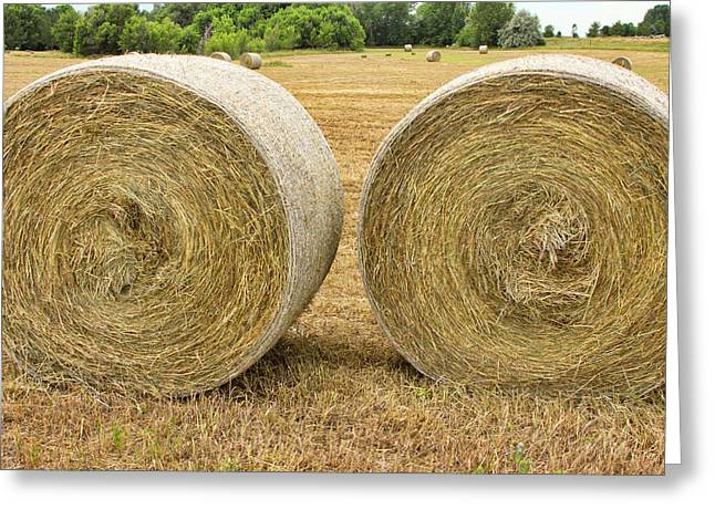 2 Freshly Baled Round Hay Bales Greeting Card by James BO  Insogna