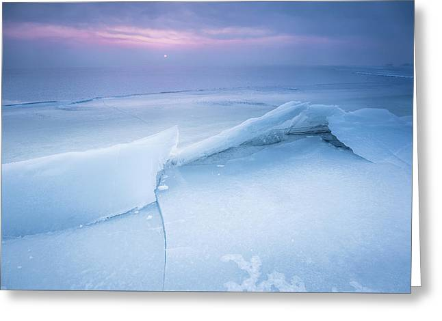 Frozen Greeting Card by Davorin Mance