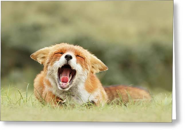 Funny Fox Greeting Card