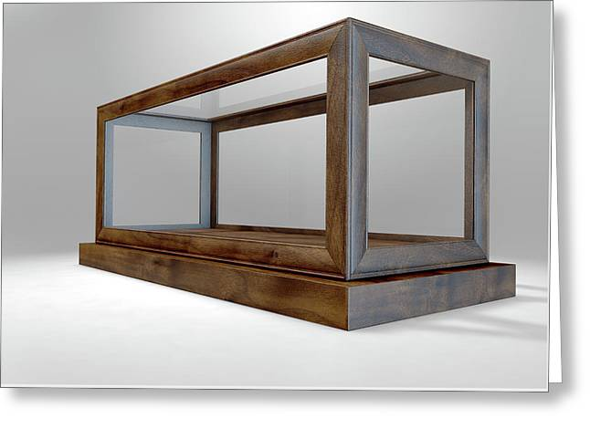Glass Display Case Frame Horizontal Greeting Card by Allan Swart