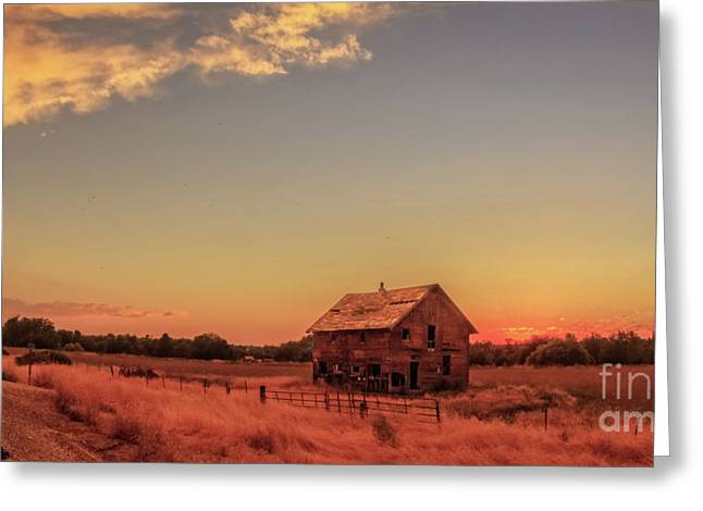 Glowing Sunset Greeting Card by Robert Bales