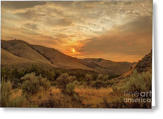 Golden Sunset Greeting Card by Robert Bales