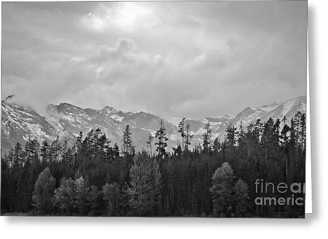 Grand Tetons Greeting Card by Brent Parks