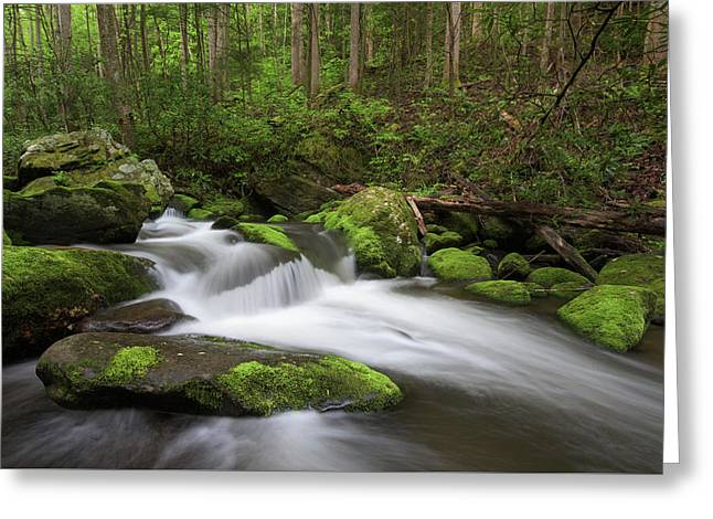 Great Smoky Mountains Roaring Fork Greeting Card by Mark VanDyke