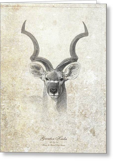 Greater Kudu Head Greeting Card by House Brasil