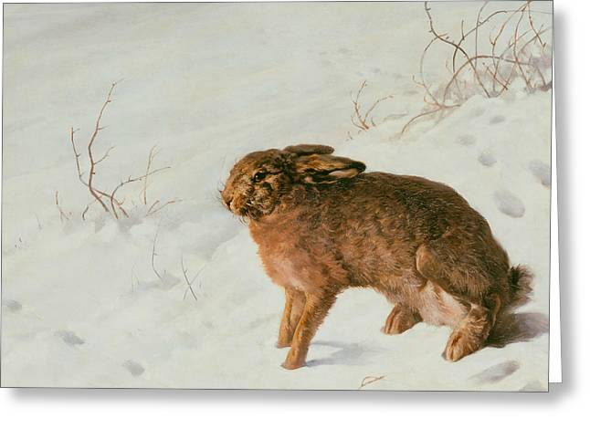 Hare In The Snow Greeting Card