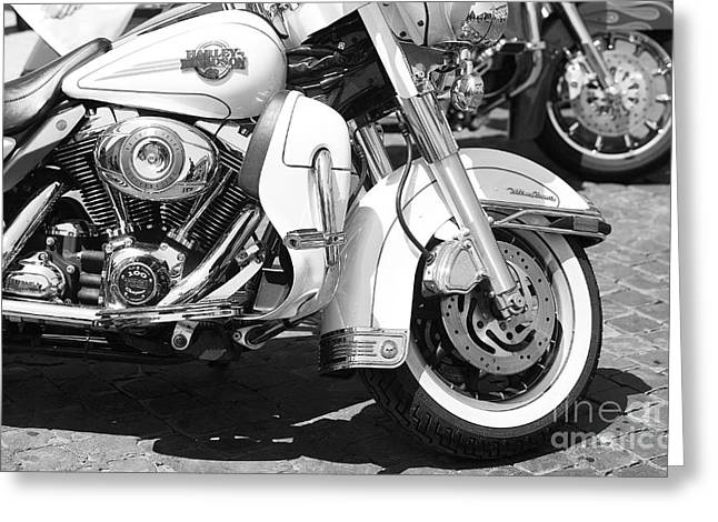 White Harley Davidson Bw Greeting Card by Stefano Senise