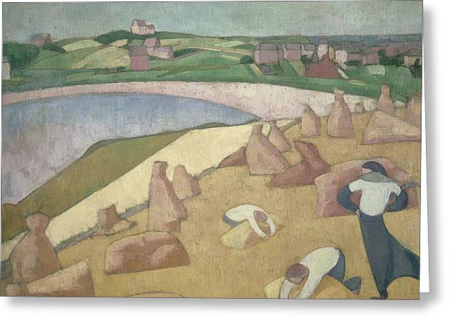Harvest By The Sea Greeting Card by Emile Bernard