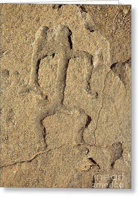 Hawaiian Petroglyph Greeting Card by Vince Cavataio - Printscapes