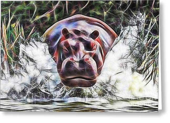 Hippo Greeting Card by Marvin Blaine