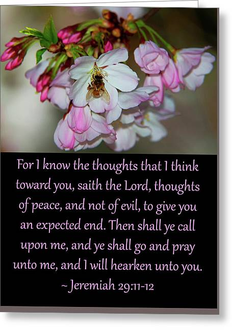 Jeremiah 29 Greeting Card by Glenn Thomas Franco Simmons