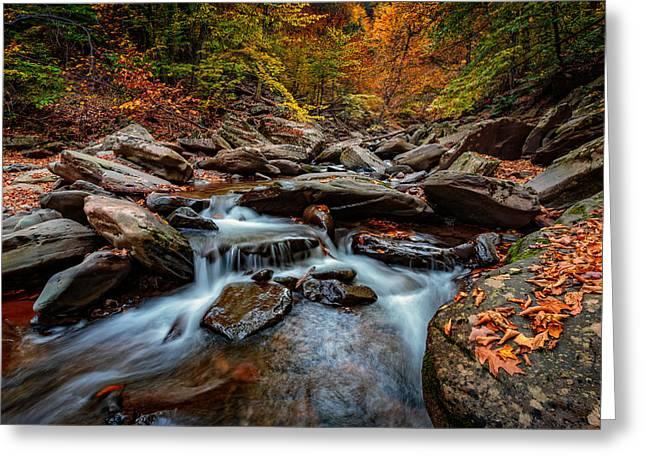 Kaaterskill Creek Greeting Card by Rick Berk