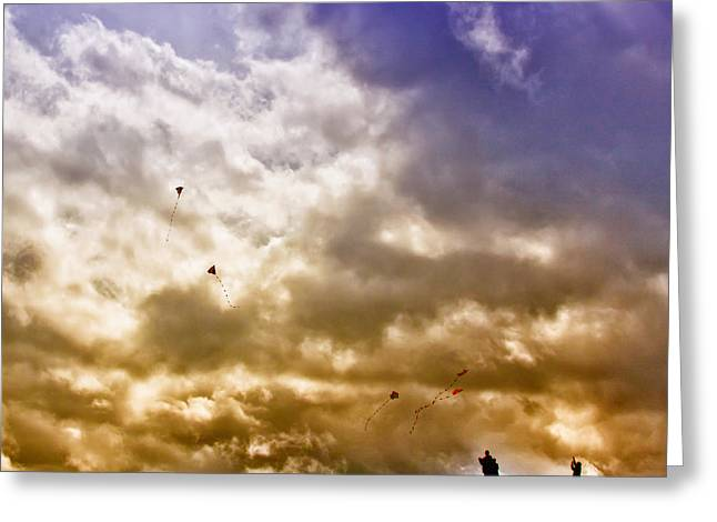 Kites Greeting Cards - Kite Flying Greeting Card by David Patterson