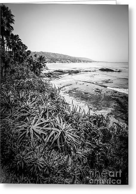 Laguna Beach Black And White Photo Greeting Card by Paul Velgos
