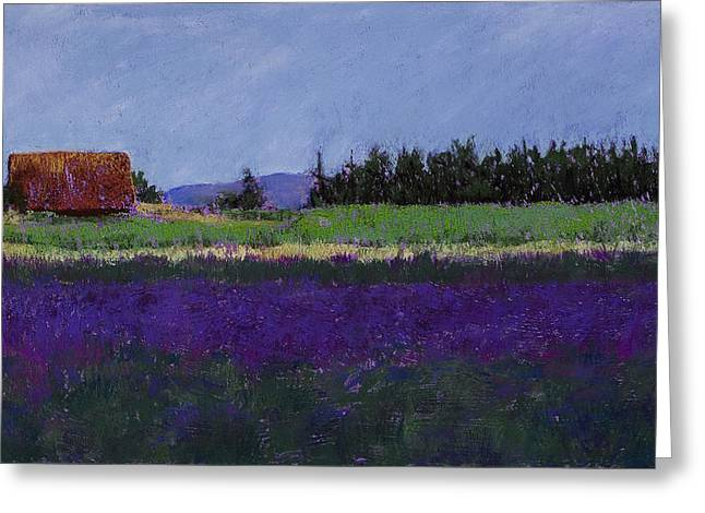 Yellow Line Pastels Greeting Cards - Lavender Farm Greeting Card by David Patterson