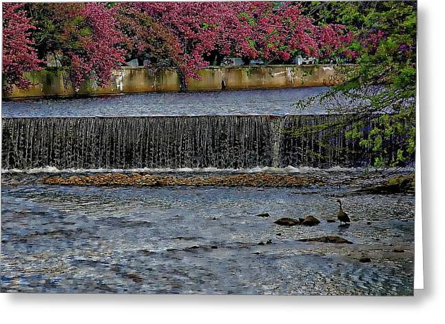 Mill River Park Greeting Card