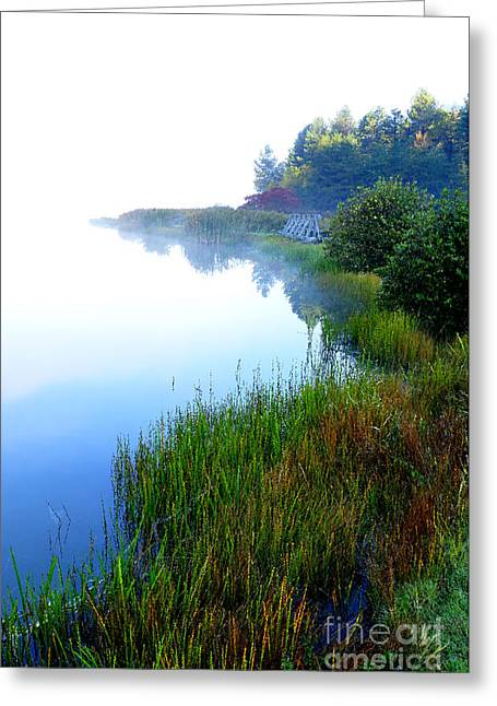 Misty Morning Big Ditch Lake Greeting Card by Thomas R Fletcher