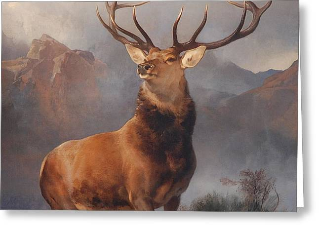 Monarch Of The Glen Greeting Card by MotionAge Designs
