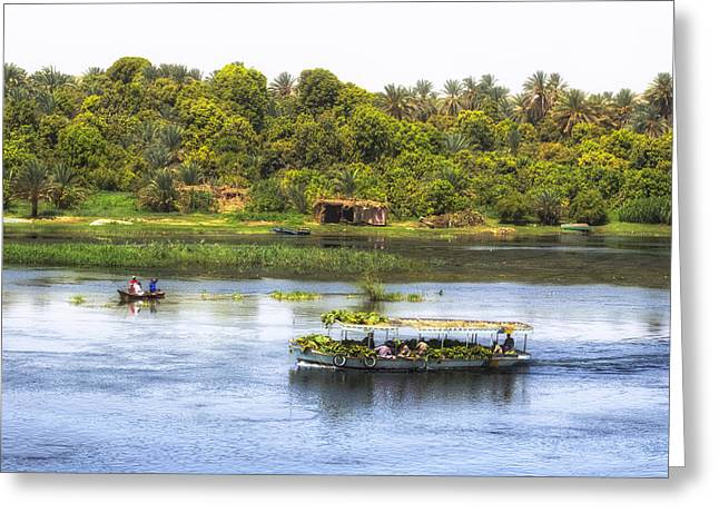 Nile Valley In Egypt Greeting Card