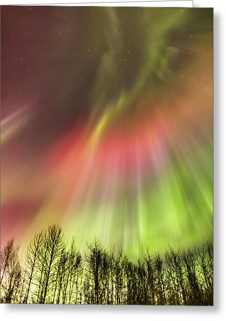 Northern Lights In The Sky Greeting Card