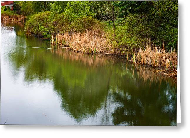 Reflections On Still Water Greeting Card
