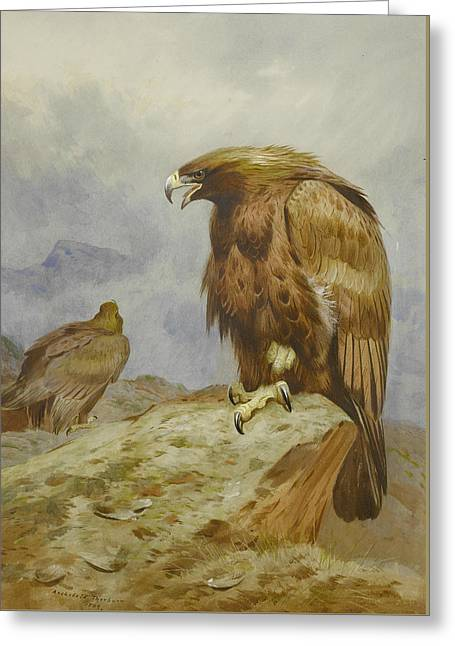 Pair Of Golden Eagles Greeting Card