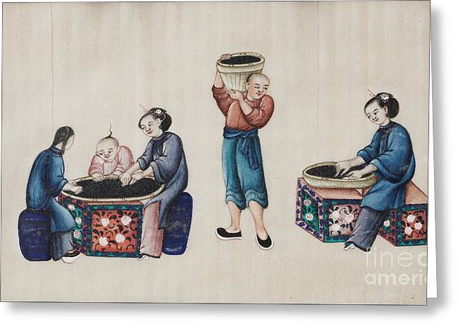 Portraying The Chinese Tea Industry Greeting Card by Celestial Images