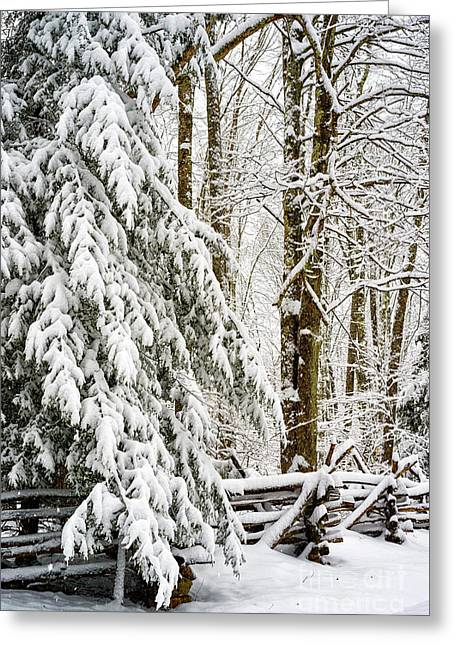Greeting Card featuring the photograph Rail Fence And Snow by Thomas R Fletcher