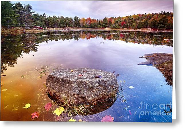 Rock In A Pond Greeting Card by George Oze