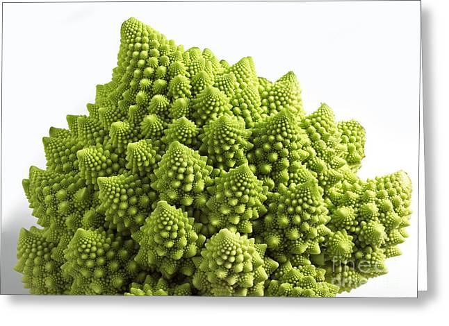 Romanesco Broccoli Or Cauliflower Greeting Card by Gerard Lacz
