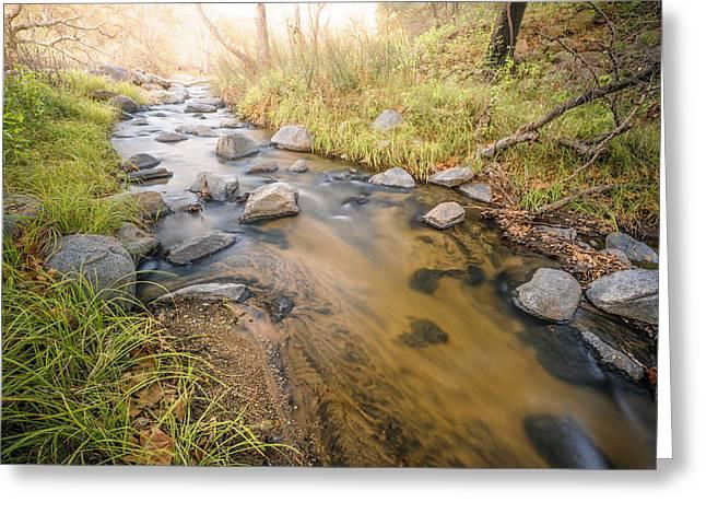 Santa Ysabel Creek Greeting Card by Alexander Kunz