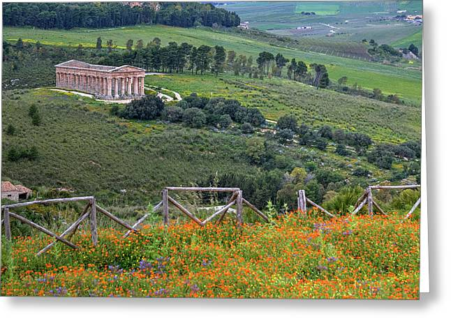 Segesta - Sicily Greeting Card by Joana Kruse