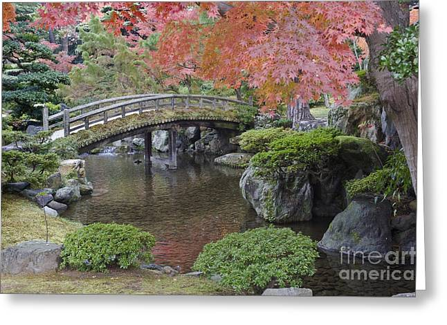 Sento Imperial Palace Gardens Lake Greeting Card