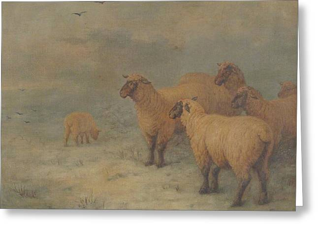 Sheep On Moorland Greeting Card by Henry Charles