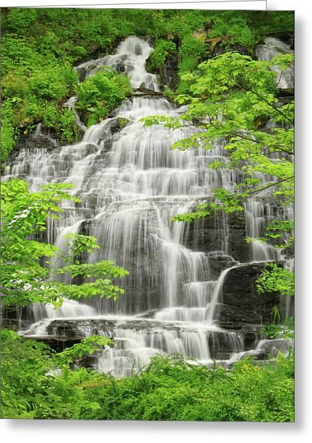 Slatestone Brook Falls Greeting Card