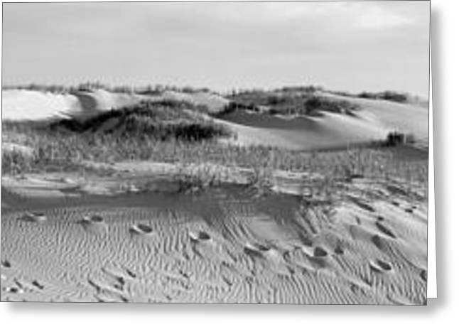 Sleeping Bear Dunes Panorama Greeting Card by Twenty Two North Photography